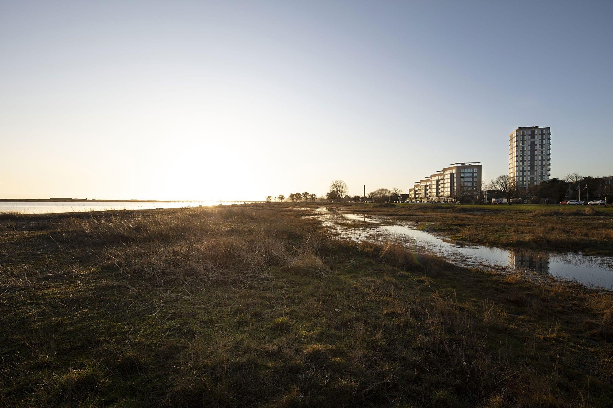 amager-strandpark-engene-strandkanten-strandtaarnet